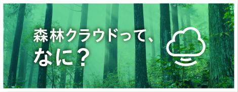 森林クラウドって、なに?