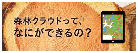 森林クラウドって、なにができるの?